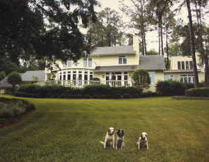 "AKC (horseback) field trial champions Luke and Scrappy, and Babe, ""the greatest English setter"" in the opinion of one noted North Florida plantation dog trainer/handler, at our Rabbit Hill residence in Tallahassee, Florida."